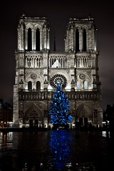 Bleu ...&... Nuit (Clinme) Tags: paris france notredame bleu capitale nuit reflets sapin photopassion