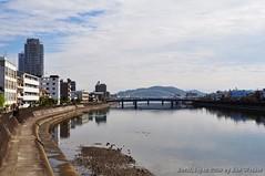 091119_d_高知鏡川_018