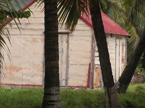 Guadeloupe 2005 325