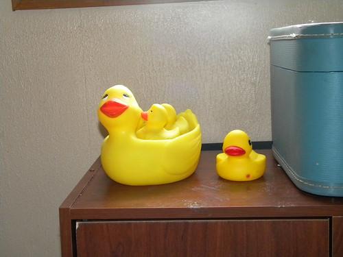 Cabinet Ducks