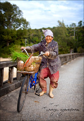 obaasan (Annya E) Tags: grandma bicycle japan happy japanese daikon okinawa onion longevity farmer okinawan yanbaru obaasan