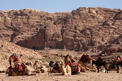 Taxi Rank, Petra (grey0beard) Tags: cliff rock urn temple sandstone taxi tomb petra siq donkey unesco worldheritagesite jordan camel column indianajones bedouin maan nabatean royaltombs roseredcity khaznah
