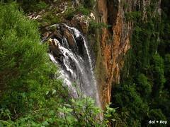 (harpsicello) Tags: travel australia springbrooknationalpark