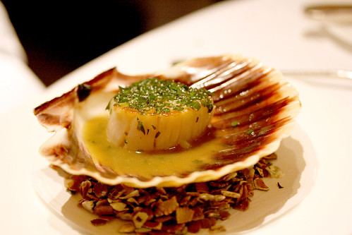 Scallop with Seashore Herbs