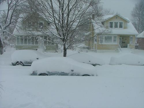 February 2010 snow 040