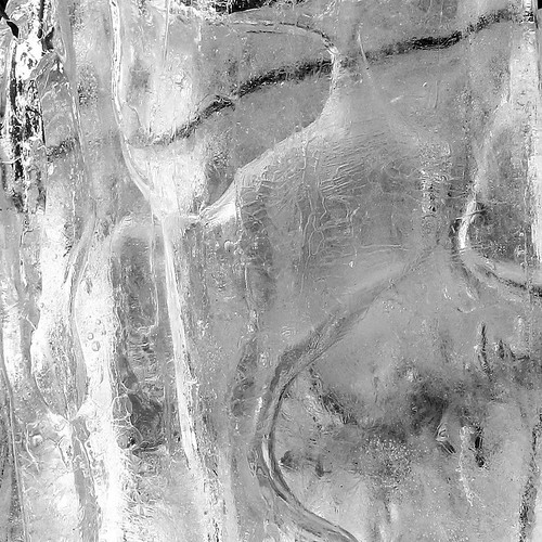 Icicle Abstract (bw)