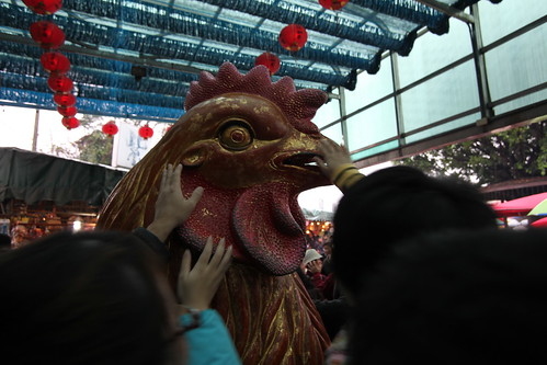 金雞,被紅包和手摸得變紅雞