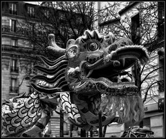 Dragon (iPh4n70M) Tags: photography photo photographer photographie photograph tc photographe tcphotography ph4n70m iph4n70m tcphotographie
