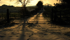 Sunlit Snow II (Mindful Youth) Tags: ireland sunset irish snow nature rural landscape countryside gate shadows special lane fields countrylandscapes