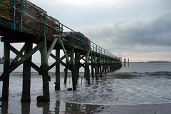 winter beach 016