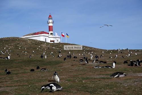Magdalena Island lighthouse