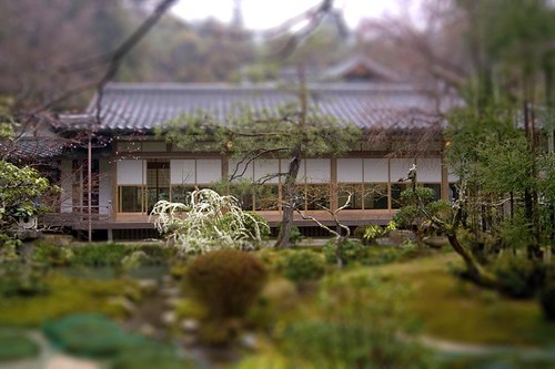 tilt shift Japanese garden