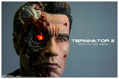 "NECA 12"" Terminator T-800 (repaint) (EdwardLee's collection) Tags: 2 movie toy toys actionfigure day action arnold schwarzenegger collection figure 16 12 terminator judgment t2 neca t800 endoskeleton edwardlees"