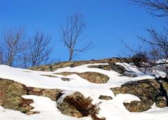 shield country (dmixo6) Tags: winter sky snow ontario canada abstract ice rock march muskoka 2010 canadianshield dugg dmixo6