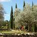 holiday-home-tuscany