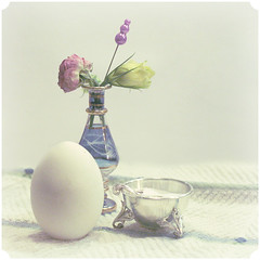 Good morning./  . (Yagoda.) Tags: flowers stilllife object egg salt saltshaker vase saltcellar