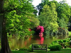 Sheffield Park, a National Trust Garden in East Sussex (UGArdener) Tags: england sky lake english gardens garden sussex spring unitedkingdom