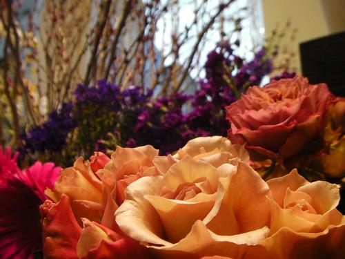 日比谷花壇 母の日