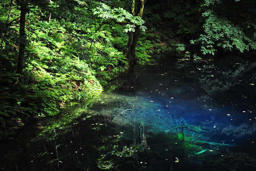 Aoike -most beautiful water in Japan
