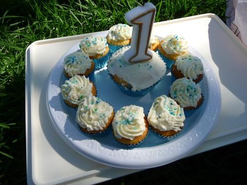 Jems1stBirthday-Cupcakes-P1030859