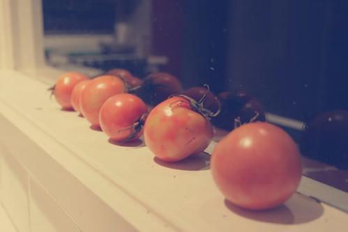100 - Tomatoes