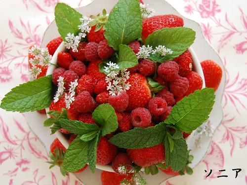 Frutos rojos 2
