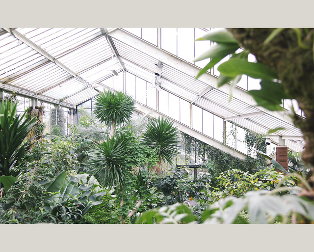 Kew Gardens - Prince of Wales Conservatory