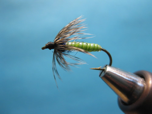 Chewee Skin Green McKenzie Soft Hackle