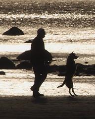 Man and Dog Silhouette on Shore at Maryport (Gilli8888) Tags: silhouette shoreline dog coast cumbria seaside beach sea water coastal monochrome rocks sand domesticpets canine