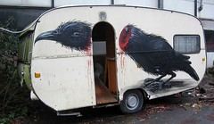roa bird caravan trailer