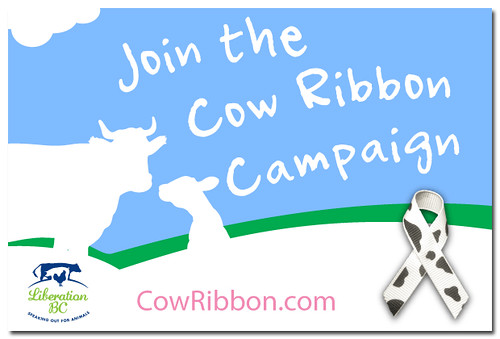 Liberation BC - Cow Ribbon Campaign eCard