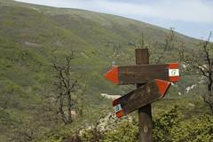Sentiero Visso-Macereto: indicazioni (Gaspa) Tags: visso macereto