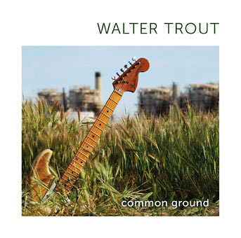 Walter Trout - Common Ground (CD)