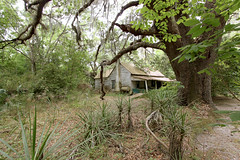 Another great Cracker find (Black.Doll) Tags: abandoned florida tinroof crackerhouse alachuacounty evinston
