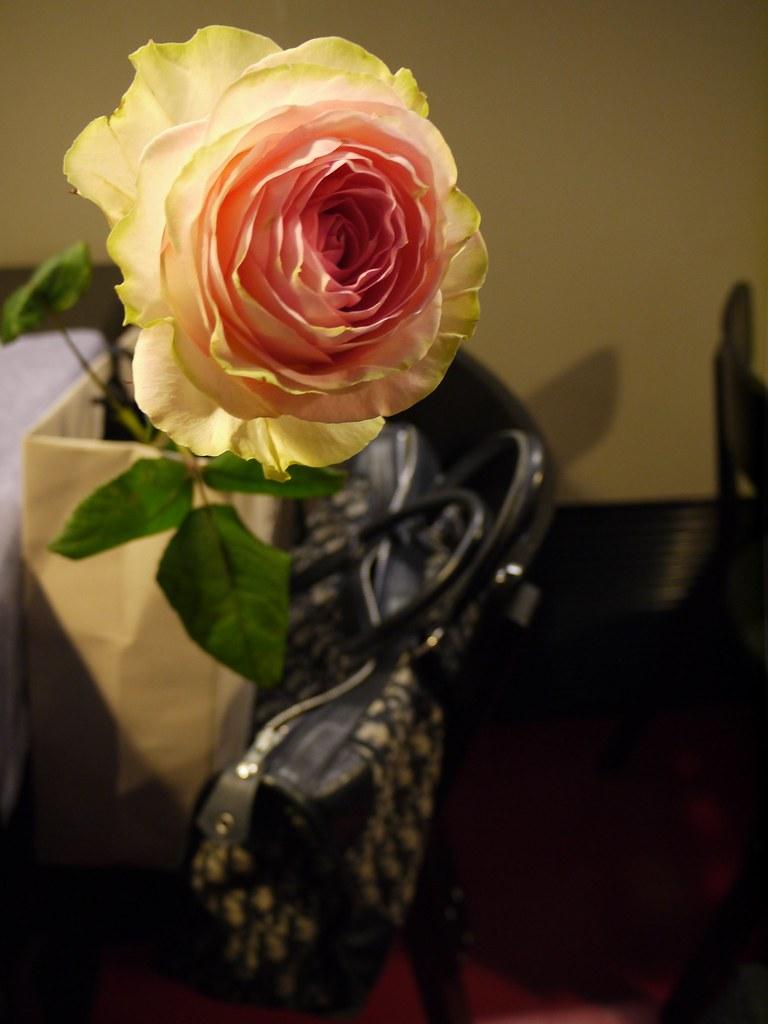 Ruusu Tepolta