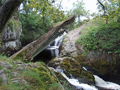 Waterfall (blueandwhite.lomas) Tags: tree water waterfall log windfall ingleton