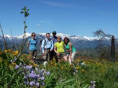 ridge groups shot