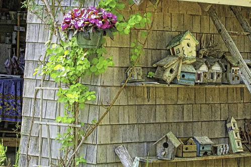 Retired and Relaxed Bird Houses