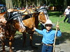 Little cowboy (Trans Costa Rica Tours) Tags: costarica littlecowboy oxcartparade costaricantraditions transcostaricatours culturaleventsinsanjosé ossekarrenoptocht costaricaansetradities