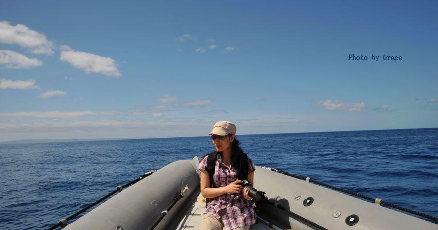 茂夷观鲸,刺激之旅 - 微娃 - 微娃