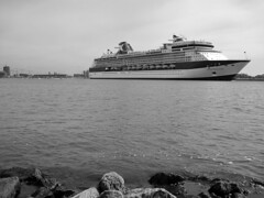 floating luxury (Harry -[ The Travel ]- Marmot) Tags: cruise bw plants white black holland water netherlands amsterdam river boot boat big rocks ship zwartwit nederland vessel passengers huge luxury ij springwater noord celebrityconstellation noordzeekanaal buitenij passagiers amsteramnoord