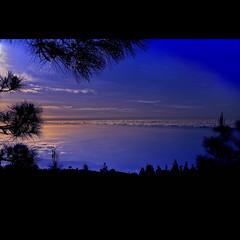 El Plan Infinito (aerferaer) Tags: sunset sky clouds atardecer lights luces spain shadows silhouettes cielo nubes tenerife vegetation puestadesol 1001nights canaryislands sombras contrasts siluetas vegetacin islascanarias contrastes valledelaorotava platinumheartaward nikond700 1001nightsmagiccity zeissdistagont35mmf2zf2 1004261072nef