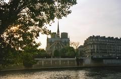 Notre Dame de Paris (jane_sanders) Tags: paris france cathedral gothic notredame notredamedeparis romancatholic frenchgothic ledelacit lestlouis lesaintlouis 4earrondissement 4tharrondissement