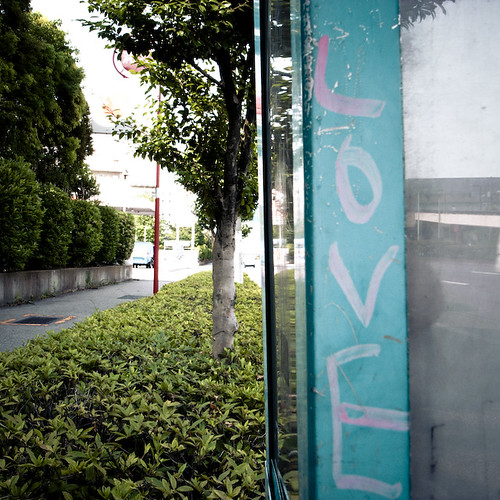 Bus Stop Love