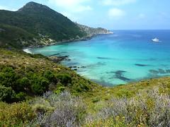 Baie de l'Acciolu : Cala di a Recisa à gauche au bout