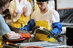 Big Cleaning Job (Greenpeace USA 2016) Tags: louisiana unitedstates wildlife greenpeace pollution disaster oil british oceans bp petroleum contamination offshoredrilling buras offshoreoilplatform deepwaterhorizon