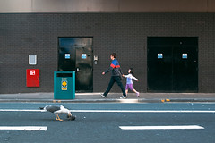 Street Scene (TGKW) Tags: road street people man brick bird girl birds wall walking dead death holding hands doors colours child eating glasgow pigeon candid seagull father daughter bin litter rubbish pecking 9335