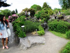 Oslo Botanical Garden in Norway #9