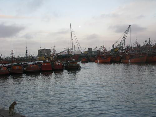 Viaje a Mar del Plata
