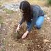 Rachael plants a tree for her Grandpas at Neot-Kedumim.